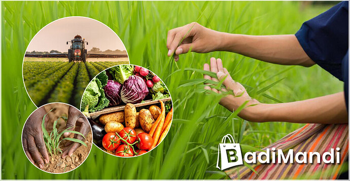 1 Agriculture Products Wholesaler in India