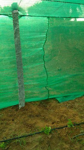 Green House shadenet -5
