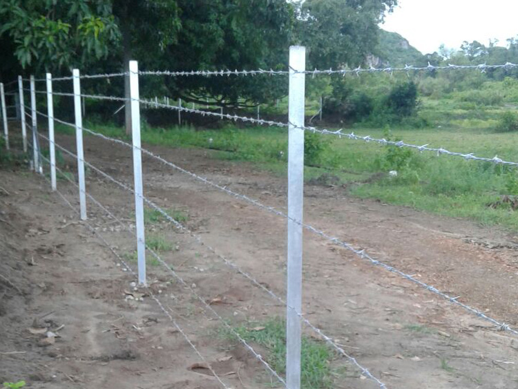 Fencing Needs, Types, Cost and Maintenance - Farm Advice - FarmNest ...